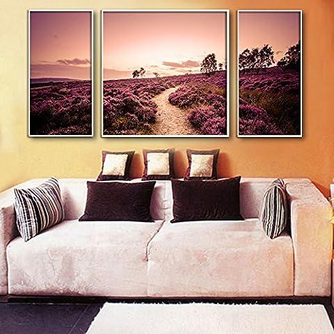 Cómo usar LEMMA El sueño del moderno Bo* Pintura Hábitat pinturas decoran el restaurante salón de animación lonas ,40*80*2pcs dormitorio +