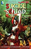 Image de Suicide Squad Vol. 1: Kicked in the Teeth (The New 52)