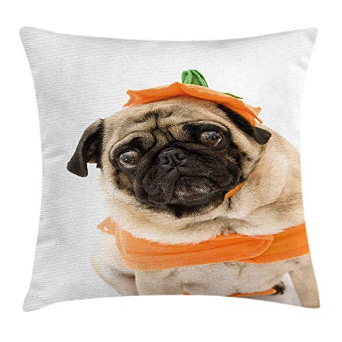 Pillow Cushion Cover, Pug with a Pumpkin Costume for Halloween Trick or Treat Cute Animals Photo, Decorative Square Accent Pillow Case, 18 X 18 inches, Ivory Orange Black ()