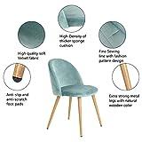 Set von 2 Esszimmer Stuhl Kaffee Stuhl Coavas Samt Kissen Sitz und R¨¹cken K¨¹che St¨¹hle mit stabilen Metall Beine f¨¹r Ess-und Wohnzimmer - 4