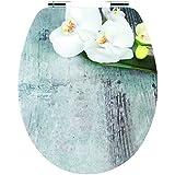 Cornat Abattant WC Orchis brillant de surface en acrylique avec système d'abaissement automatique Motif Attache rapide, 1pièce, ksdsc309