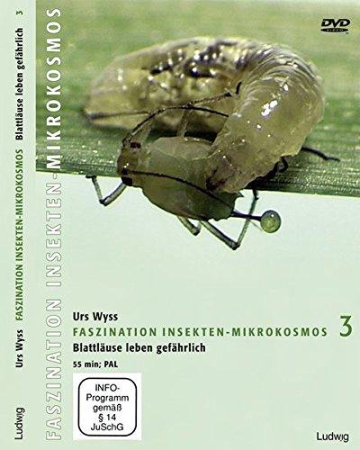 faszination-insekten-mikrokosmos-3-blattluse-leben-gefhrlich