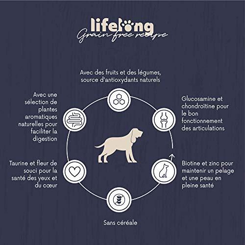 Marque Amazon - Lifelong Aliment complet pour chiens seniors de moyenne et grande race sans céréale élaboré avec de la viande fraîche de poulet - 5kg