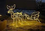 LED Deko 'Rentier mit Schlitten', 177 cm lang, Weihnachtsbeleuchtung für Draussen, Leuchtfigur