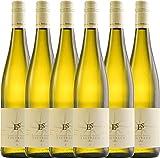 6er Paket - Tagtraum 2017 - Ellermann-Spiegel | halbtrockener Weißwein | deutscher Sommerwein aus der Pfalz | 6 x 0,75 Liter