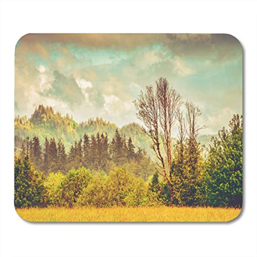 Gaming Mauspad Beautiful Forest Landscape in The Coquille River Valley Southern Oregon 11.8