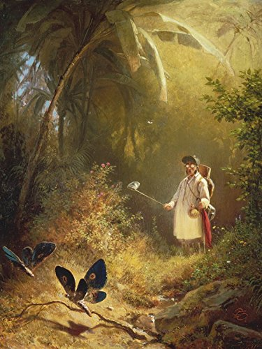Mann Stehen Baum Ein (Artland Leinwand auf Keilrahmen oder gerolltes Poster mit Motiv Carl Spitzweg Der Schmetterlingsfänger Menschen Mann Malerei Grün B1KR)