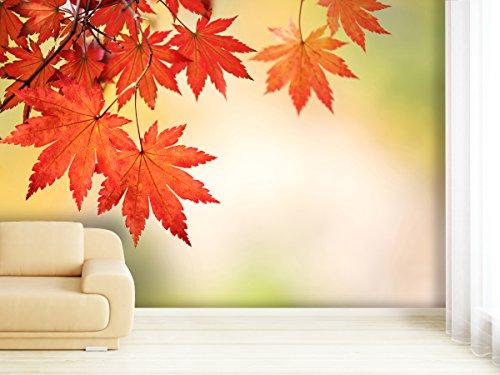 Carta da parati fotografica Autumn Leaves In diverse Taglie-Come carta da parati in carta o (Autumn Leaves Tessuto)