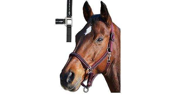 Perlonhalfter Pony schwarz