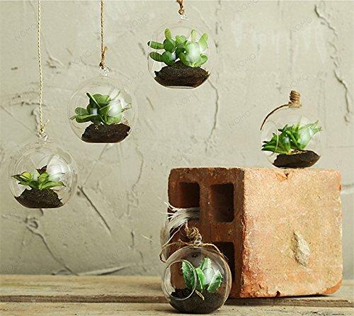 real-touch-mini-piante-grasse-in-bolla-di-vetro