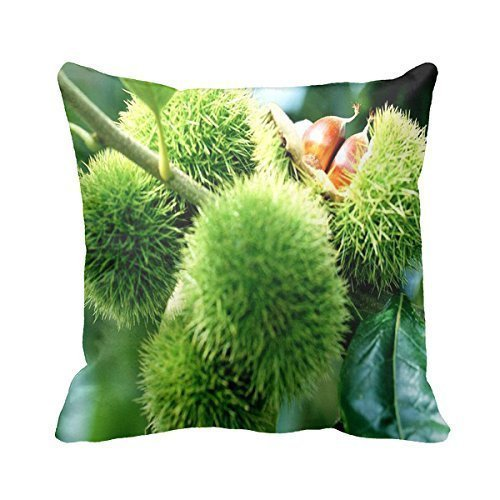 B Lyster shop Chestnut #5677W 18 x 18 Pillow Case Home Decor Cushion Cover