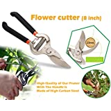 DeoDap Gardening Tools- Garden Shears Pruners Scissor, Pruning Seeds Hedge Cutter (Multicolour, Flower_cutter(8inch))