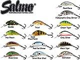 Salmo Hornet Wobbler Forellenwobbler, Barschwobbler, Hechtwobbler, Hechtköder, Forellenköder, Angelköder, Köder