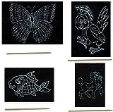4er SET Kratzbilder mit den Motiven Fisch, Pferd, Schmetterling und Papagei