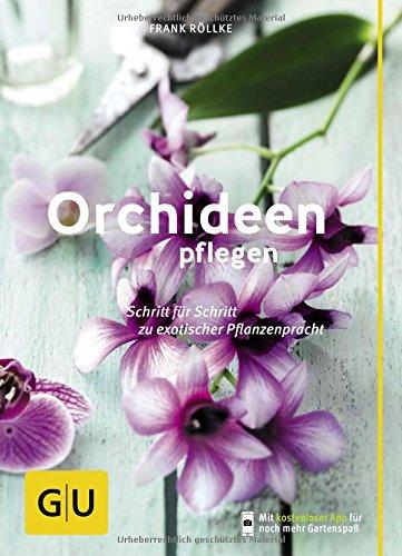 orchideen-pflegen-schritt-fur-schritt-zu-exotischer-pflanzenpracht-gu-praxisratgeber-garten