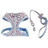 Huertuer Blumenmuster Tiny Kleinen Hundegeschirr Leine Leine Fuß Brustgurt für Pet (Blau, L)