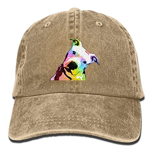 KKAIYA Pit Bull Rainbow Series Pop Art Vintage Washed Dyed Cotton Twill Low Profile Adjustable Baseball Cap - Series Ball Valve