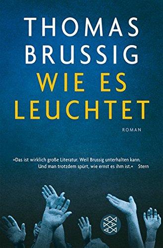 Buchcover Wie es leuchtet: Roman