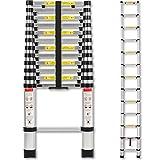 TRESKO® Teleskopleiter Anlegeleiter Aluleiter Stehleiter | Fingerklemmschutz | belastbar bis 150 kg | ca. 47,5 cm breit | Tragegriff (3,20m)