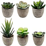Tebery 6 Pcs Plantes artificielles, Faux Pot de Fleurs artificielles Assorties en Pot Simili Cactus Plantes, Petits Pots de Plantes artificielles avec Gris pour Home Office Decor