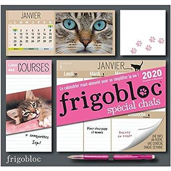 Frigobloc Chats 2020 - Calendrier d'organisation familiale (de janvier à décembre 2020): S'organiser n'a jamais été aussi simple !