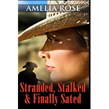 Stalked, Stranded and Finally Sated (Contemporary Romance): Volume 1 (License to Love Series:Book 1)