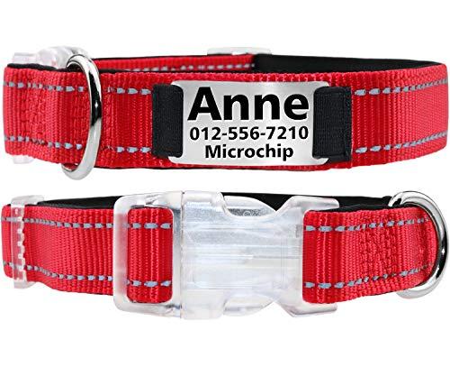 Taglory Hundehalsband mit Name, mit Edelstahl Erkennungsmarke Personalisiert, Rot Hundehalsband Gepolstert für Kleine Mittlere Große Hunde, Verstellbar und Feflektierend