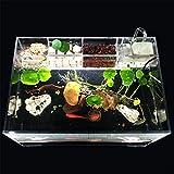 Yshen Aquarium Serbatoio per Pesci con Filtro per Pompa Acqua Home Office Contenitore per Allevamento Tartarughe Pesci Rossi
