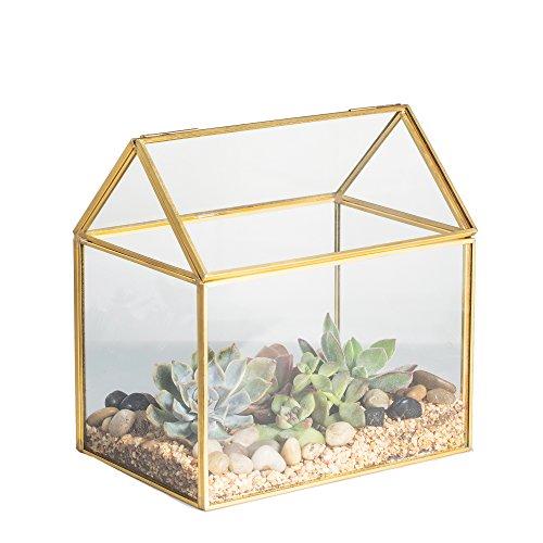 Ottone Rame casa terrario in vetro a forma di casetta, da tavolo, per piante grasse, felci e muschio con coperchio basculante Rettile 15,5cm x 16cm x 11cm