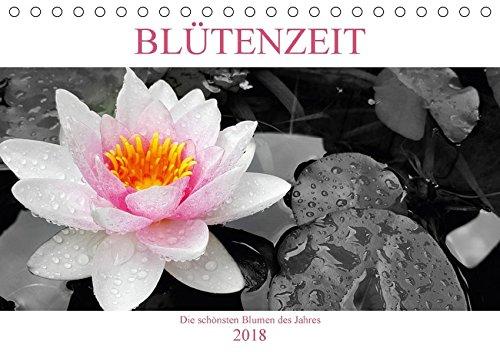 BLÜTENZEIT - Die schönsten Blumen des Jahres (Tischkalender 2018 DIN A5 quer): Die schönsten Blumen farbig hervorgehoben im stilvollen schwarz-weiß ... Natur) [Kalender] [Apr 20, 2017] Henri, Chris (Henri-kalender)