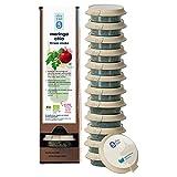 Shuyao Bio Moringa Chia Fitness Shake 117g - mit natürlichem Protein und Chia Samen