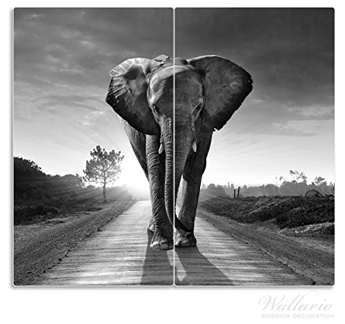 Wallario Herdabdeckplatte / Spritzschutz aus Glas, 2-teilig, 60x52cm, für Ceran- und Induktionsherde, Elefant bei Sonnenaufgang in Afrika schwarzweiß