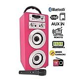 DYNASONIC - draagbare bluetooth-luidspreker voor karaoke, 10W, 2 microfoons inbegrepen, radio, USB en SD-lezer, kleur roze roze
