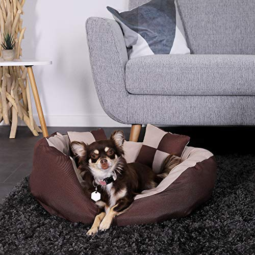 dibea DB00110 Hundebett – Hundekissen, Hundesofa abwischbar mit Wendekissen, 65 x 50 x 20 cm, braun/beige - 2