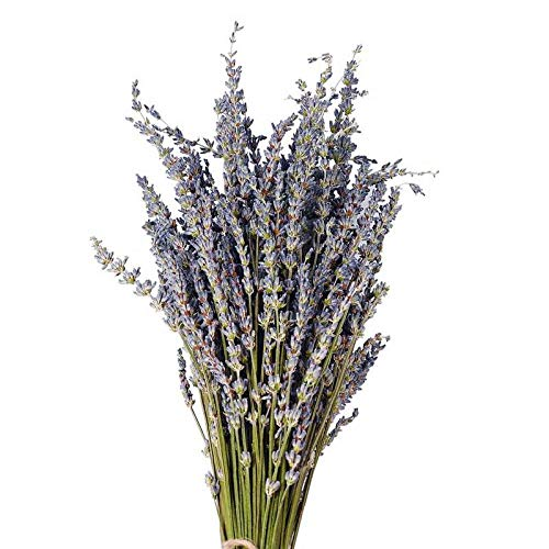 Artificial & Dried Flowers - Natural Lavender Bouquet Immortal Fresh Dried Flowers Diy Home Decoration Banquet Wedding - Flowers Dried Artificial Artificial Dried Flowers Flower Small Bouquet Ra Bouquet Natural Wood