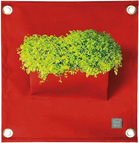 The Green Poche Le 40 x 50 cm. cm. Rouge foncé