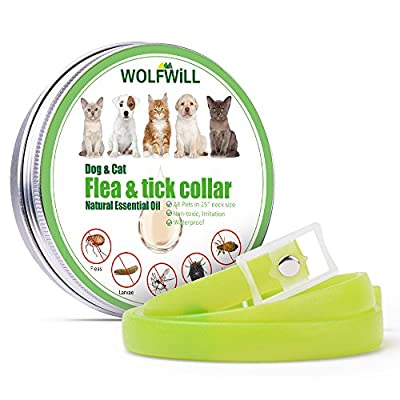 WOLFWILL Dog Flea from WOLFWILL
