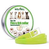 Wolfwill Dog Anti Flea & Tick Collar, 180 - Best Reviews Guide