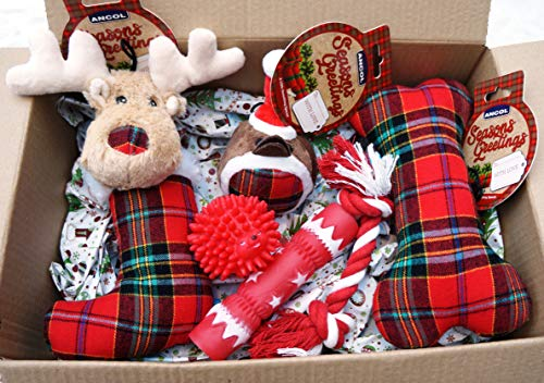 Paradise Pets CHRISTMAS DOG TOY GIFT BOX FESTIVE TARTAN TOYS WITH CRACKER ROPE & SQUEAKY TOY
