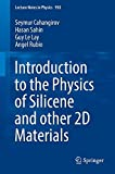 Introduction to the Physics of Silicene and other 2D Materials (Lecture Notes in Physics)