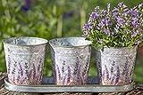 Pflanztopf-Set 4-tlg. Kräutertopf Provence aus Zink mit Lavendel verziert