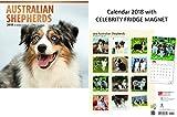 Australian Shepherds Kalender 2018 With Celebrity Kühlschrankmagnet