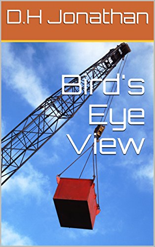 birds-eye-view-english-edition