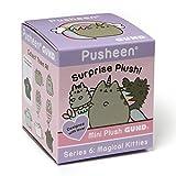 GUND - Pusheen Plüsch Blind Box Serie # 6: Magical Kätzchen, von Enesco