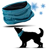 PamperPets Kühlhalsband für Hunde | Kühlendes Halstuch für den Sommer | Cool Bandana | Anti-Stress und Entspannung (L (55cm Halsumfang))