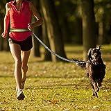 Cadrim Hunde Joggingleine mit verstellbarem Hüftgurt,elastische Bungee Leine zum handfreien Laufen/Fahrrad fahren,zusätzliche Tasche für Handy und Schlüssel etc. super zum Laufen, Joggen, Wandern und Markteinkauf,Schwarz/Weiß (Grau) - 6