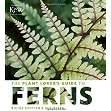 The Plant Lover's Guide to Ferns