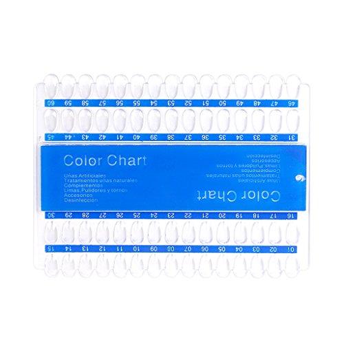 60 Plaques Acryliques UV Pédicure Art De Vernis à Ongles Tableau D'affichage De La Couleur