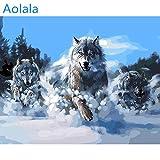 Abstrakte wölfe Tiere DIY Digitale malerei by Zahlen Kits acrylbild handgemalte ölgemälde für wohnkultur, 50x65cm