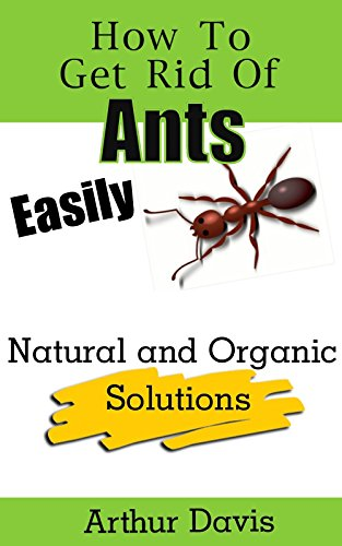 how-to-get-rid-of-ants-easily-natural-and-organic-solutions